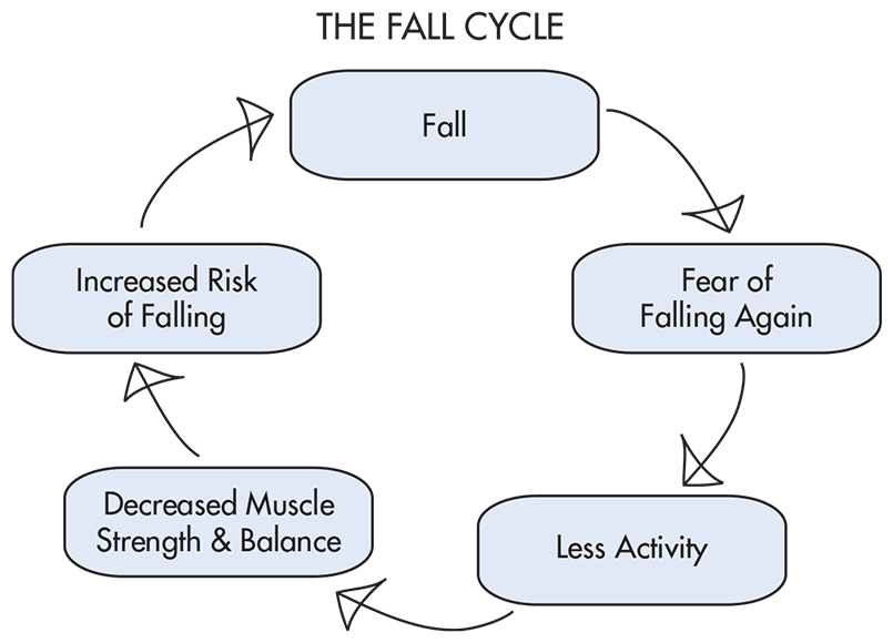 The fall cycle